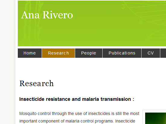 Screen shot of Ana Rivero's website